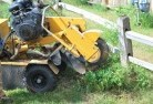 Crowea Stump grinding services 3